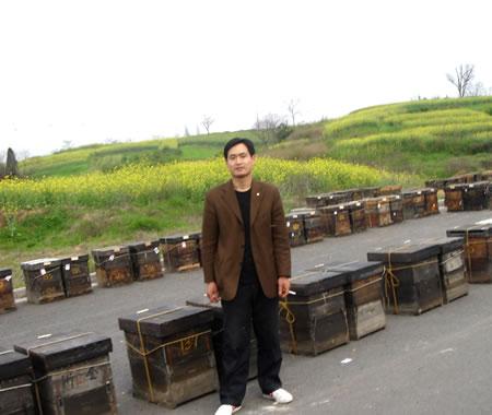 江南的油菜场地